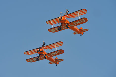 wingwalk1